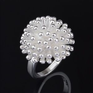 Jewelry - Silver Fireworks Ring